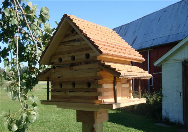 Bird House Plans For House Finch Wooden Patterns For Halloween Wooden